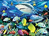 Diamante Crafts Painting by Numbers Kit - A3 - Includes Paints/Brush/Board - 8 Designs (PJL42 - Reef Sharks)
