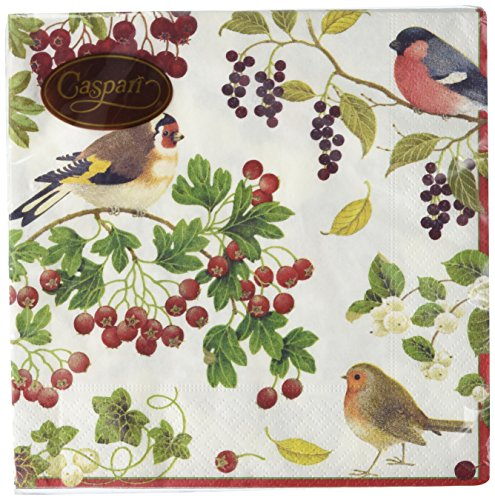 Entertaining with Caspari Winter Birds Luncheon Napkin, Pack of 20 (Winter Napkins)