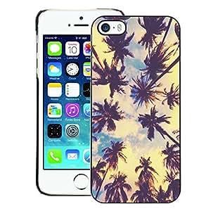 A-type Arte & diseño plástico duro Fundas Cover Cubre Hard Case Cover para iPhone 5 / 5S (Miami La Palm Trees Tropical Summer)