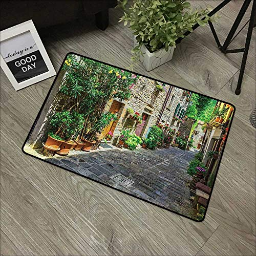 (Bedroom Door mat W19 x L31 INCH Tuscan,Doorway to Tuscan House Build with Cobblestone with Many Flowering Plants,Green Beige Grey Easy to Clean, no Deformation, no Fading Non-Slip Door Mat Carpet )