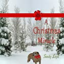 A Christmas Miracle Audiobook by Sandy Loyd Narrated by Carol Dines