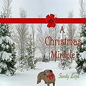 A Christmas Miracle | Sandy Loyd