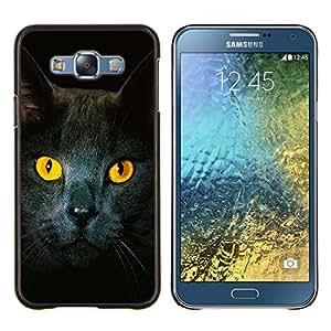 TECHCASE---Cubierta de la caja de protección para la piel dura ** Samsung Galaxy E7 E700 ** --Gato Ojos amarillos Gris Británico de Pelo Corto