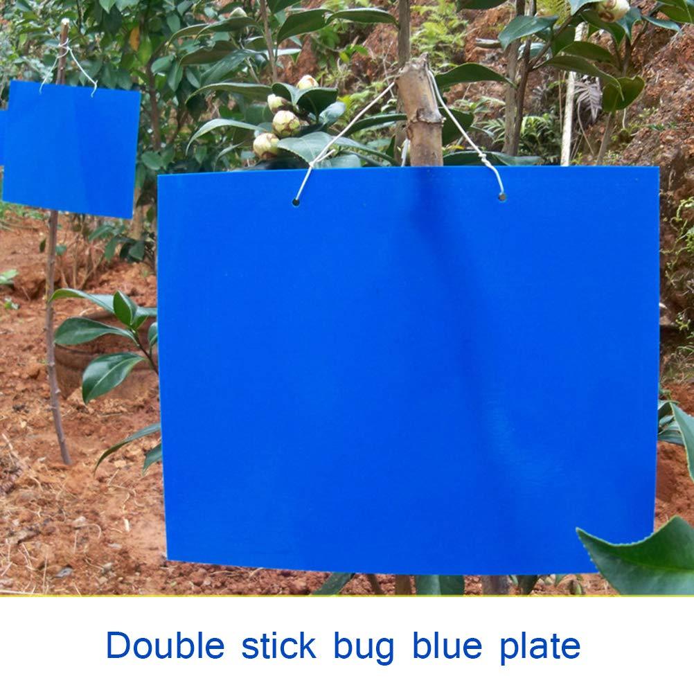 Contre Les moustiques effrayants Kampre Tuiles Bleues Double Fly Catchers Fly Traps 30 pi/èces Autocollant Catcher Fly Catcher Autocollant Bleu Grand Format 20x15cm