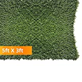 "Pet Zen Garden 612409784056 PZG 1"" Artificial Grass Patch with Drainage Holes & Rubber Backing"