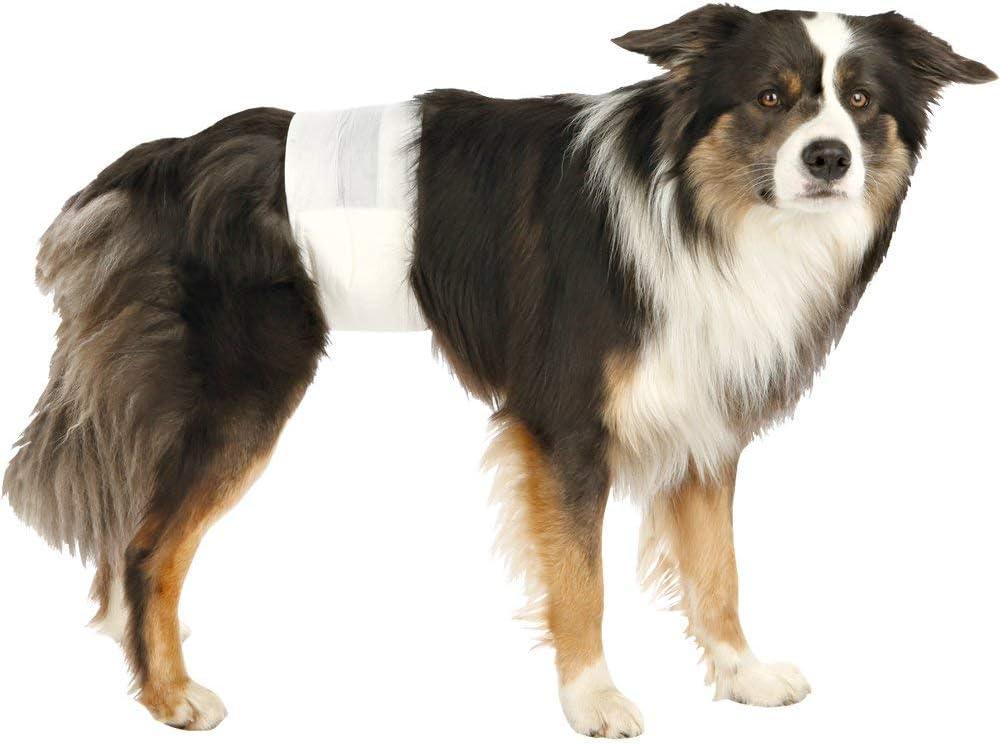 Trixie Pañales para Perros Absorbentes - Empapadores Perros Desechables para Incontinencias Cómodos 12 Unidades Talla M-L, 46-60 cm