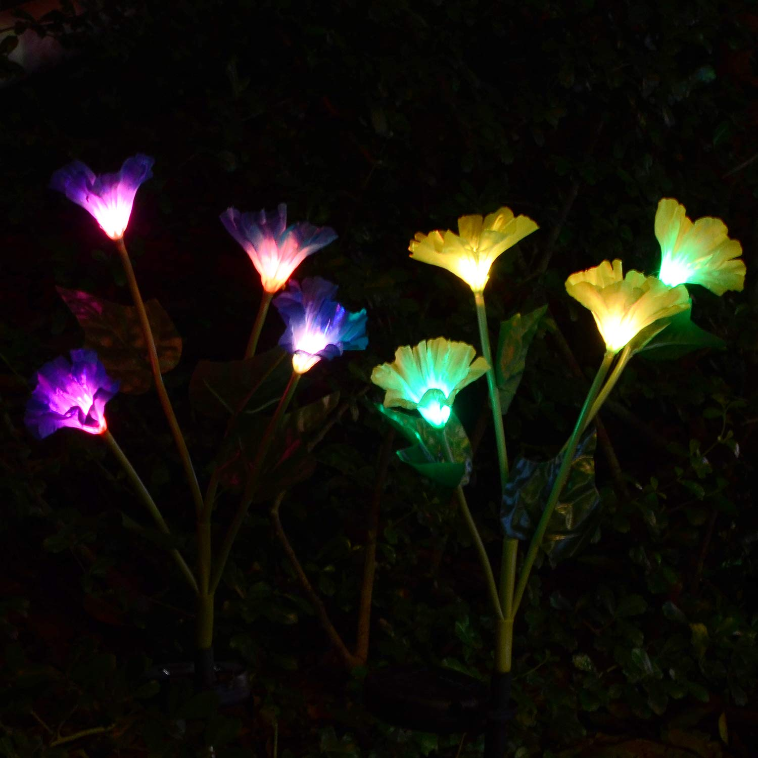 Doingart Outdoor Solar Garden Stake Lights 2 Pack Solar Powered Lights with 8 Morning Glory Flower, Multi-color Changing LED Solar Decorative Lights for Garden, Patio, Backyard (Blue and Yellow)