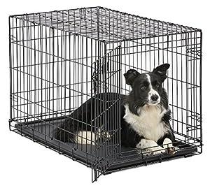 MidWest Homes for Pets Dog Crate | iCrate Single Door & Double Door Dog Crates