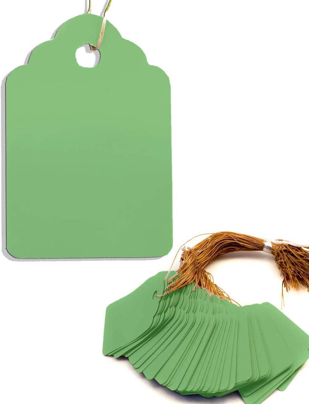 HomeTools.eu/® Str/äuchern 100 St/ück Pflanzen-Anh/änger mit Schnur zur Beschriftung von Pflanzen Kunststoff 3,5 x 2,5cm GR/ÜN verwitterungs-fest
