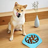 talifiy Dog Bowl Slow Feeder, Large 500ml Healthy Eating Pet Interactive Feeder with Anti-Skid Non-Slip Grip Base to Reduce Overeating Bloating Vomiting Obesity for Wet Dry Raw Food and Water (BL)