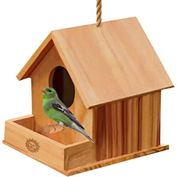 Wooden DIY Birdhouse For Kids