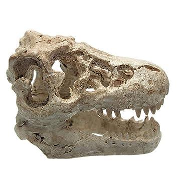 MSYOU Adorno para pecera, Resina, Dinosaurio, Forma de Calavera, para Acuario, Paisaje, Decoraciones, Rocas, Cuevas, decoración bajo el Agua: Amazon.es: ...