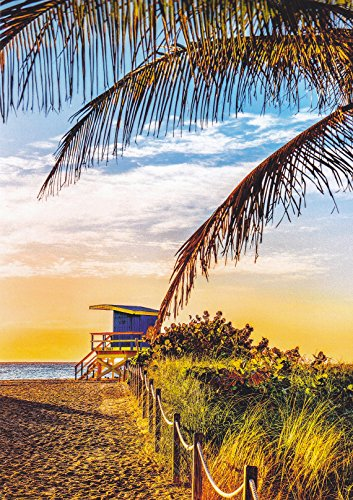 (AMERICA114 - MIAMI BEACH, FLORIDA POSTCARD ... from Hibiscus Express)