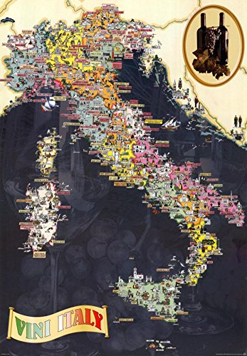 Wines of Italy Poster 27 x 39in by EuroGraphics