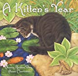 img - for A Kitten's Year book / textbook / text book