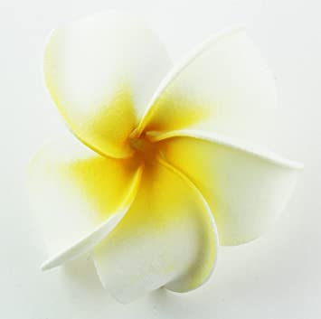 Amazon hawaiian flower hair clip tropical flower summer hair hawaiian flower hair clip tropical flower summer hair accessory white yellow mightylinksfo