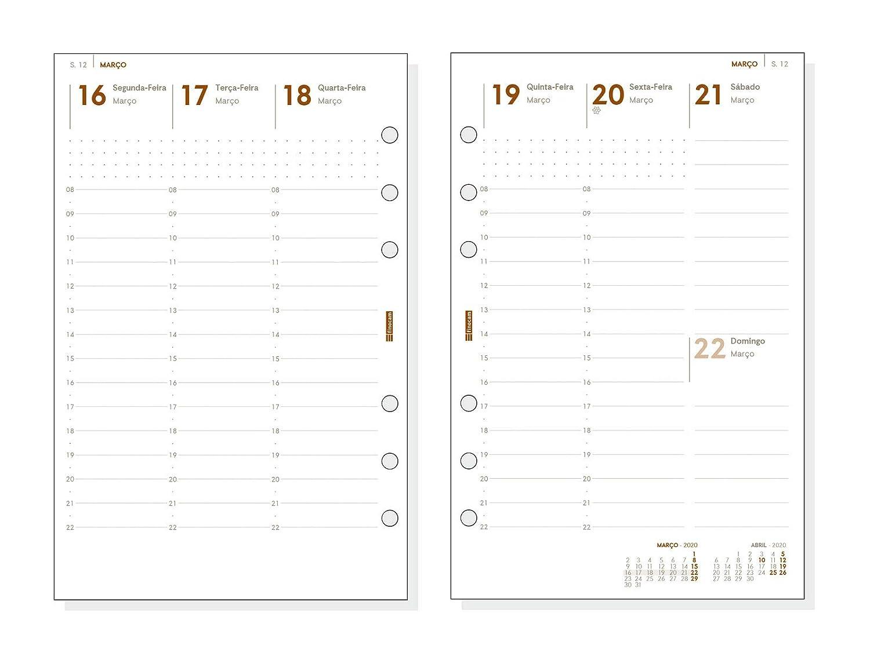 Finocam - Agenda Organizador 2020 semana vista vertical Open ...