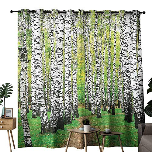 Mannwarehouse Farm House Decor Collection Decorative Curtains for Living Room Pathway in Birch Grove Forest Early Fall Scene Print Noise Reducing W72 x L108 Yellowgreen Olive Peru