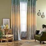 Leyden TM Grommet Top a Wave of Flowers Gradient Print Curtain Window Panels, 42-Inch by 84-Inch (1 Panel) Custom Size