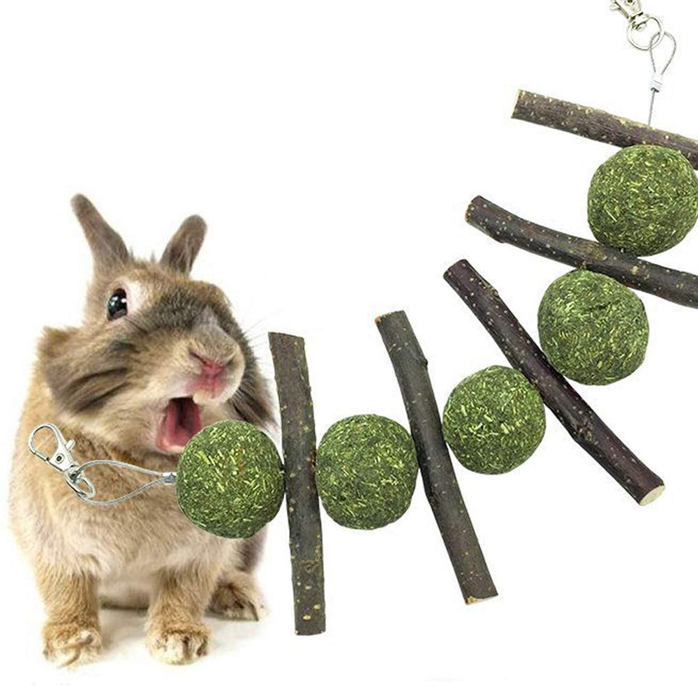 UMIWE Jouets à l'herbe à Chat Ballon Chinchilla Bâton de Pommier des collations Traiter pour Bunny Lapin Cochon d'Inde Rat Hamster Perroquet