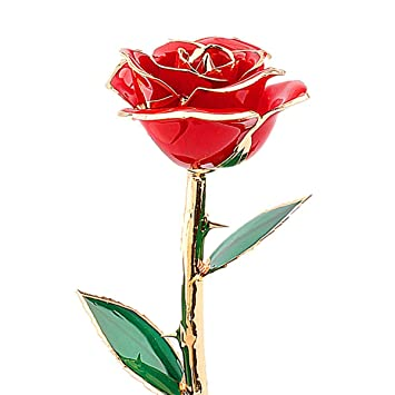 zjchao Valentines Gifts for HerRose 24 Carat Gold Dipped Real Red Rose Flower  sc 1 st  Amazon UK & zjchao Valentines Gifts for HerRose 24 Carat Gold Dipped Real Red ...