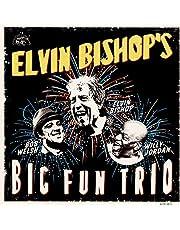 Elvin Bishops Big Fun Trio