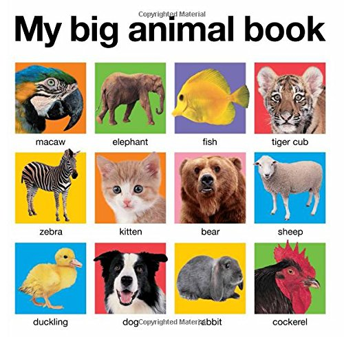 Big Animal Book Board Books