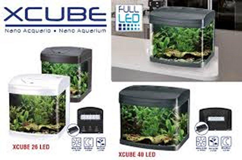 Wave XCube 40 Acuario completo 40 L, iluminación LED, 45,5 x 32,5 x 37H cm) negro: Amazon.es: Deportes y aire libre