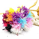 900pcs/lot 3mm Glass Stripe Artificial Flower Stamen Pistil Craft DIY Cake/card/wedding Decoration