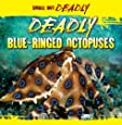 Deadly Blue-Ringed Octopuses (Small But Deadly (Paperback))