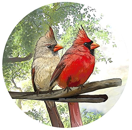 Screen Door Magnets - That ALWAYS STAY UP using our Exclusive Twist, Click and LOCK Design - Keep People and Pets From Walking Into Screens - 2 Matching Magnets (Cardinals) by Screen Door Magnets B016E11Z3Y カーディナルズ カーディナルズ
