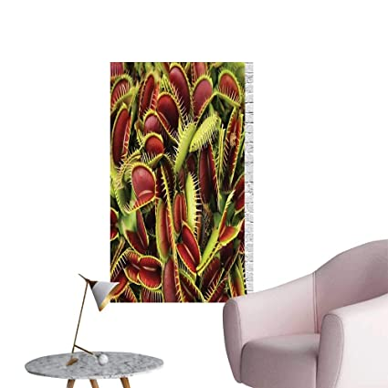 Wall Painting Carnivorous Plant Frighten Botanic Foliage Killer