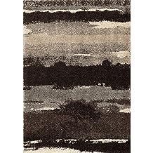 "Orian Rugs Wild Weave Canyon Slate Area Rug, 7'10"" x 10'10"", Black"