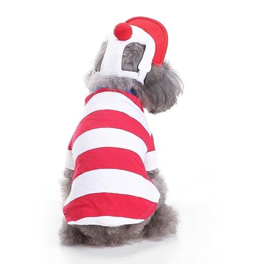 180d4df5307 Amazon.com: Elogoog Puppy Clothes, Super Cute Pet Dog Cat Stripe T ...