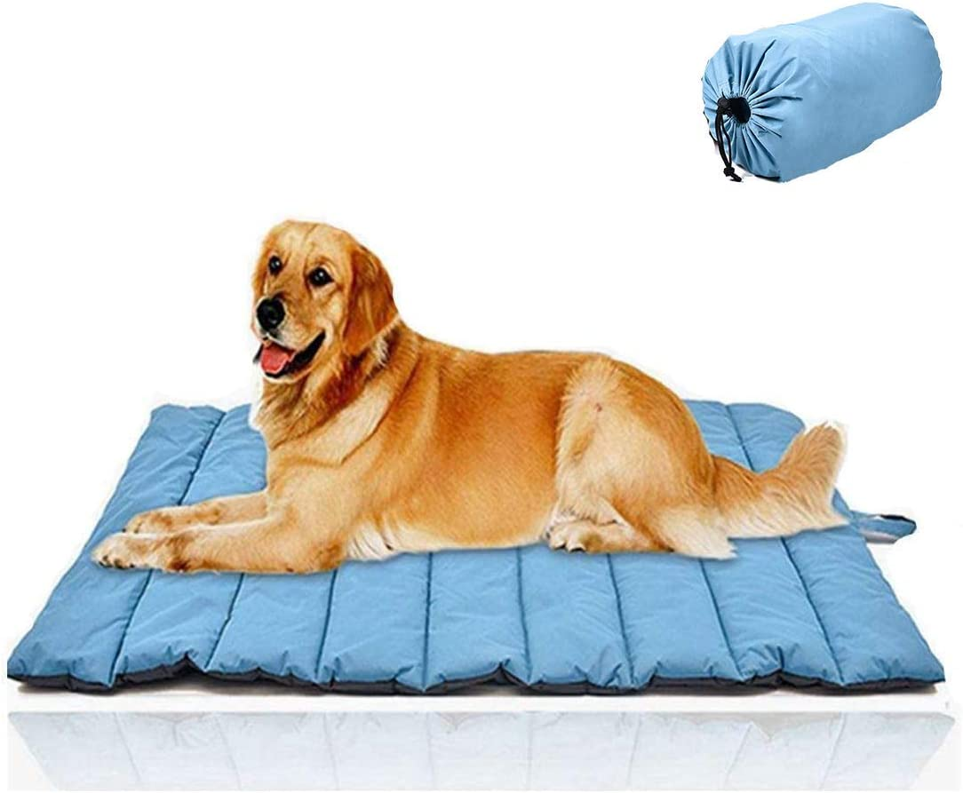 dog camping beds - packable dog bed