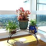Elegant Arch Design Black Metal Plant Stand / Flower Pots Shelf Unit / Decorative Planter Stand - MyGift