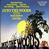 Into The Woods (Peters, Gleason, Zien, Aldredge, Westenberg) by Original Cast Recording (1990-10-22)