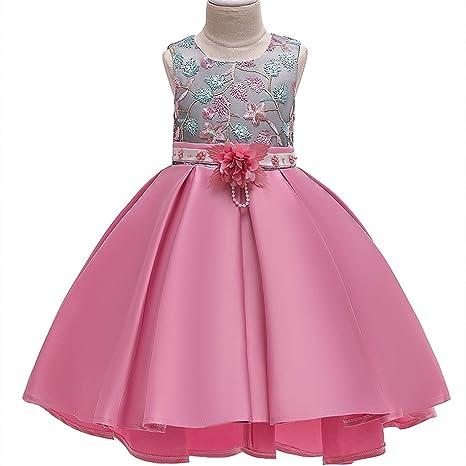 Amazon.com: Vestido para bebé o niña, con bordado, para boda ...