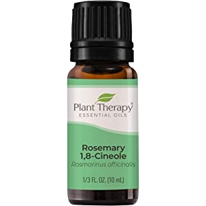Plant Therapy Rosemary Essential Oil 100% Pure, Undiluted, Natural Aromatherapy, Therapeutic Grade 10 mL (1/3 oz)