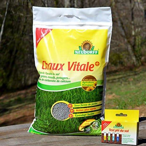 Neudorff Cal Mejorada para el jardín con Kit Test Ph del Suelo – Bolsa de 10 kg neu-chavi10: Amazon.es: Jardín