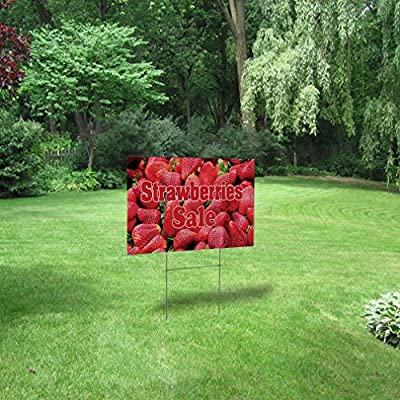 Letrero de plástico corrugado con texto en inglés Destination Strawberries Sale Outdoor Lawn Decoration: Amazon.es: Jardín
