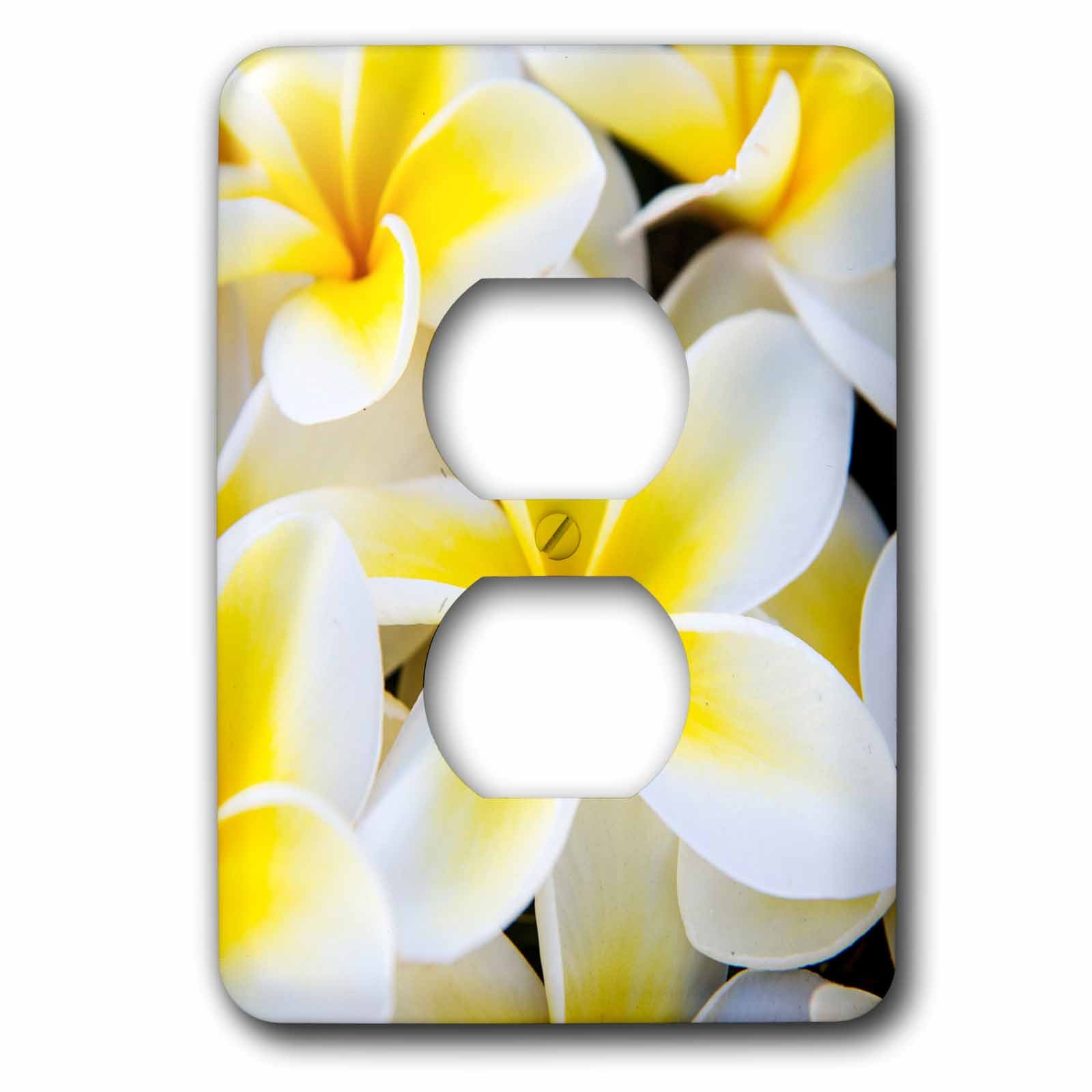 3dRose LSP_259246_6 USA, Hawaii, Maui, Close Up of Plumeria Flowers Plug Outlet Cover, Mixed