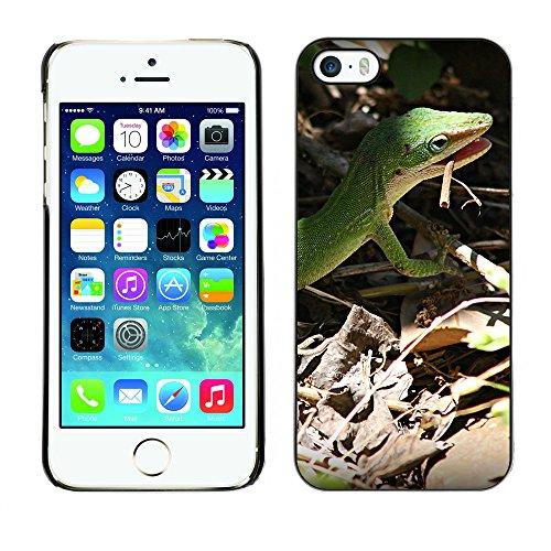 Premio Sottile Slim Cassa Custodia Case Cover Shell // F00009581 lézard // Apple iPhone 5 5S 5G