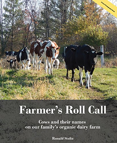 farmers-roll-call-cows-and-their-names-on-our-familys-wisconsin-organic-dairy-farm
