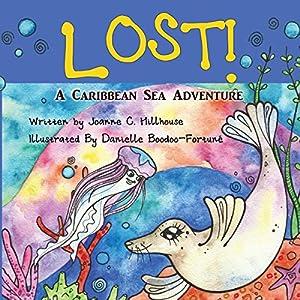 Lost! Audiobook