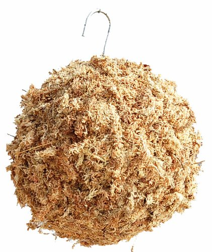 how to make a sphagnum moss ball