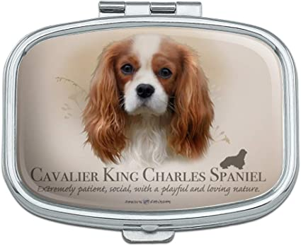 Credit Card Case Cavalier King Charles Spaniel Business Card