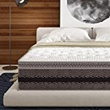 Signature Sleep Justice 14-Inch Premium Hybrid Gel Memory Foam and Independently Encased Coil Mattress with CertiPUR-US certified foam, Firm Mattress Support - Queen