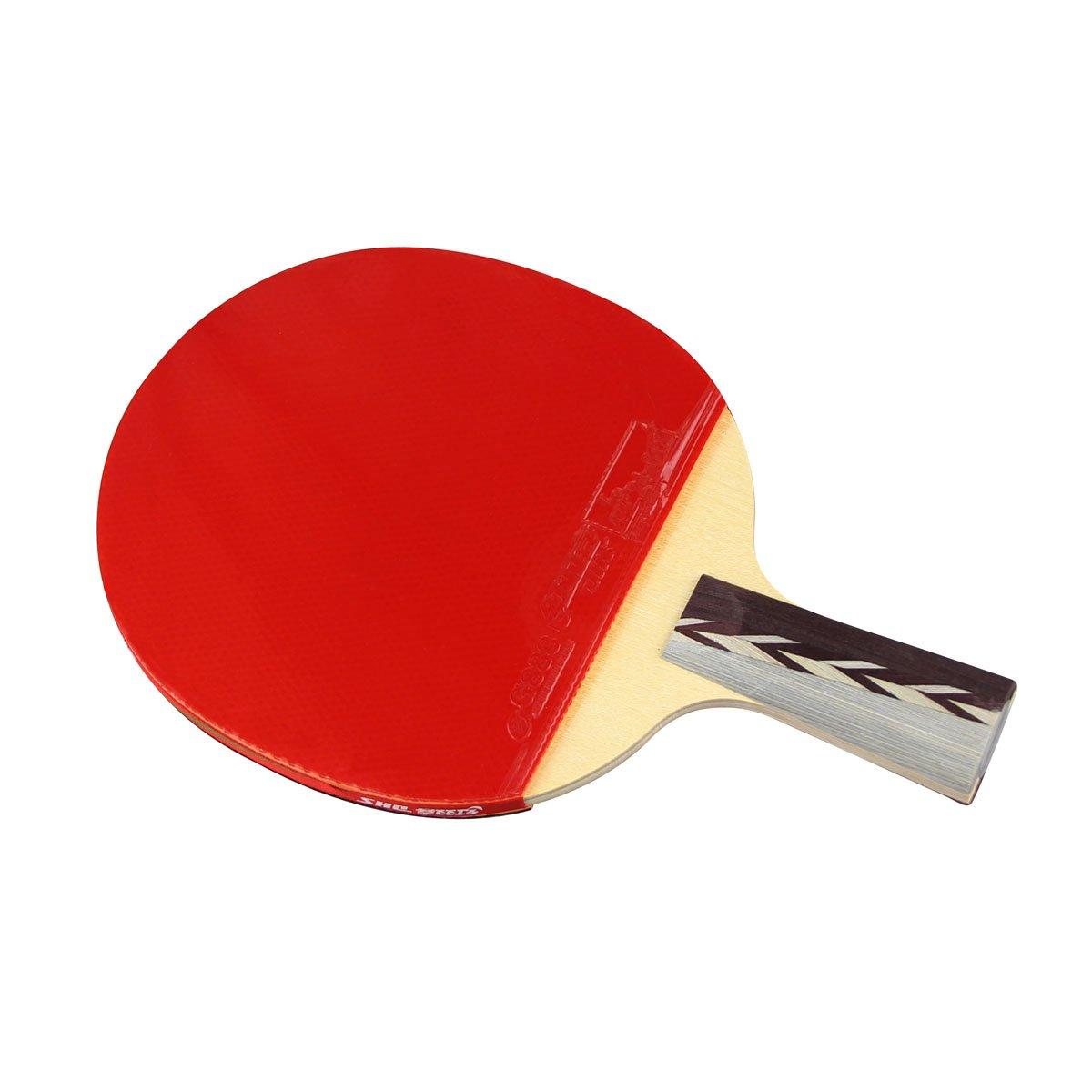 DHS 4006 4-Star Table Tennis Racket (Penhold)   B003VUUN26