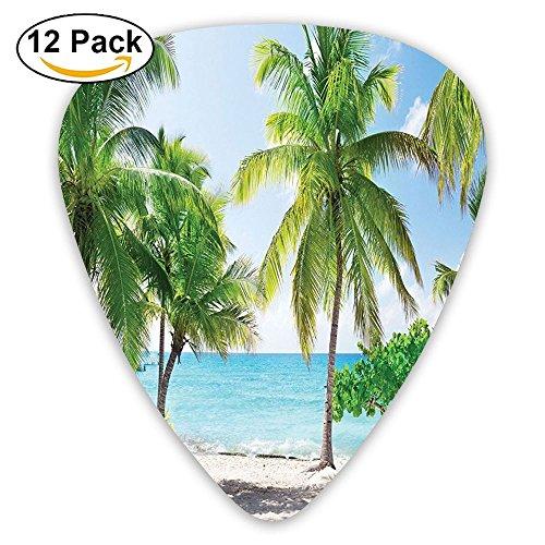 Newfood Ss Palm Leaves And Catalina Island Seashore Coastal Panoramic Guitar Picks 12/Pack Set ()